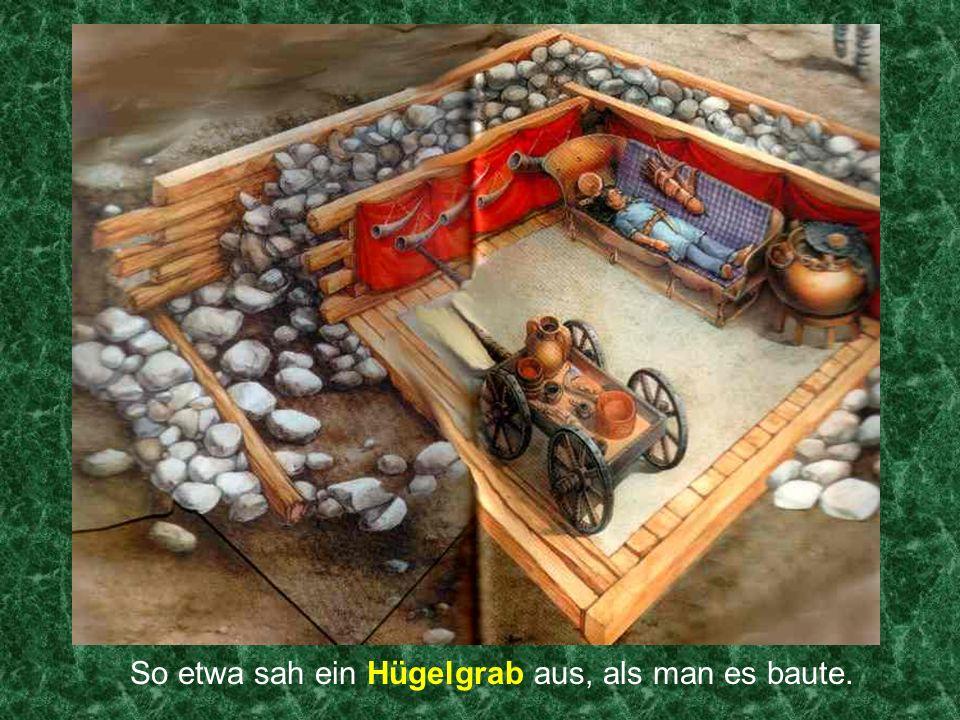 Da wurden sogar die Römer neidisch: Die Kelten ließen ihre Stahlpflüge von Stieren oder Pferden ziehen.