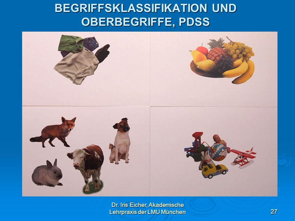 Dr. Iris Eicher, Akademische Lehrpraxis der LMU München27 BEGRIFFSKLASSIFIKATION UND OBERBEGRIFFE, PDSS