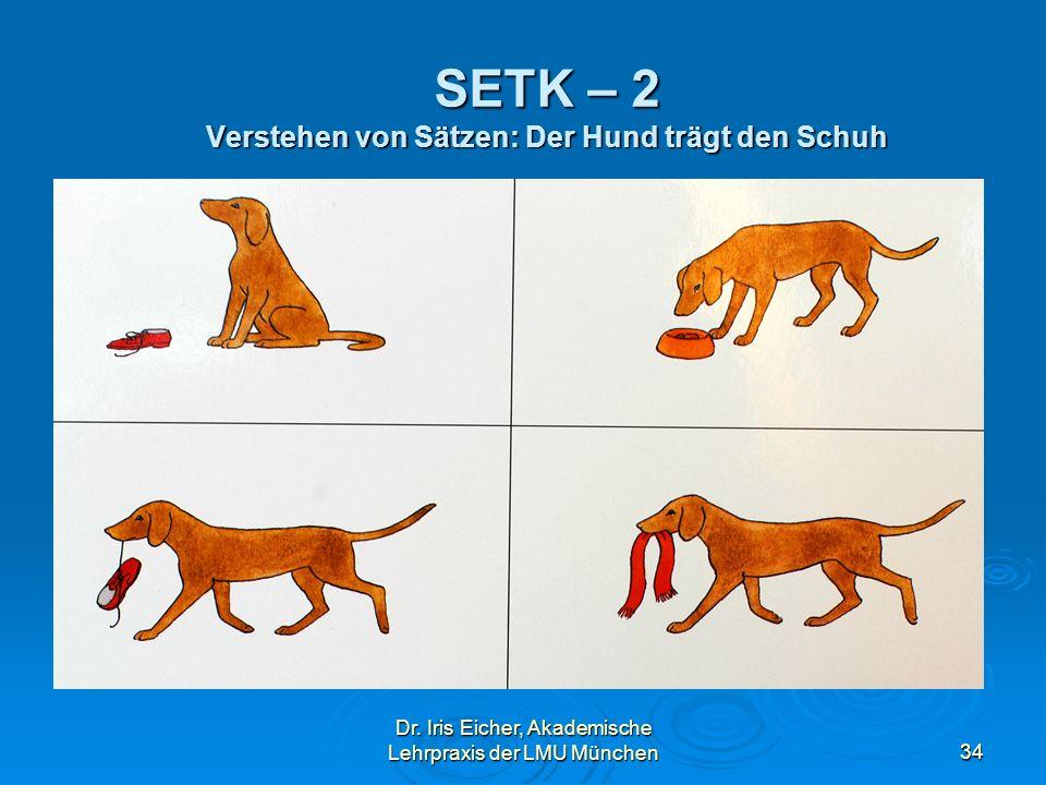 Dr. Iris Eicher, Akademische Lehrpraxis der LMU München34 SETK – 2 Verstehen von Sätzen: Der Hund trägt den Schuh