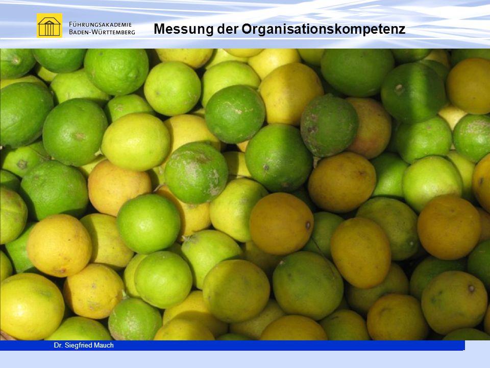 Generalsekretär Thomas E. Berg Dr. Siegfried Mauch Messung der Organisationskompetenz Was beeinflusst Lernen in Organisationen? Verbesserung der Probl