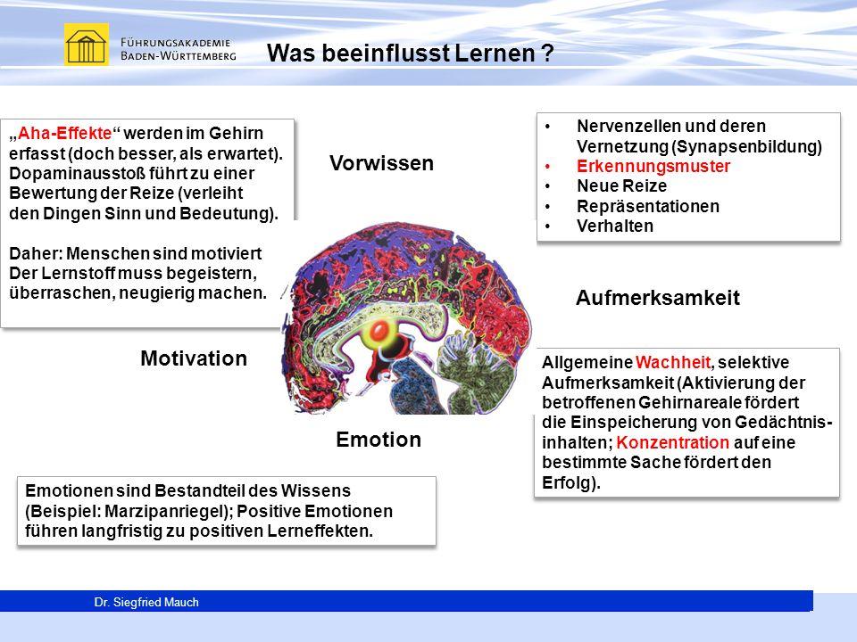 Generalsekretär Thomas E. Berg Dr. Siegfried Mauch Was beeinflusst Lernen ? Nervenzellen und deren Vernetzung (Synapsenbildung) Erkennungsmuster Neue