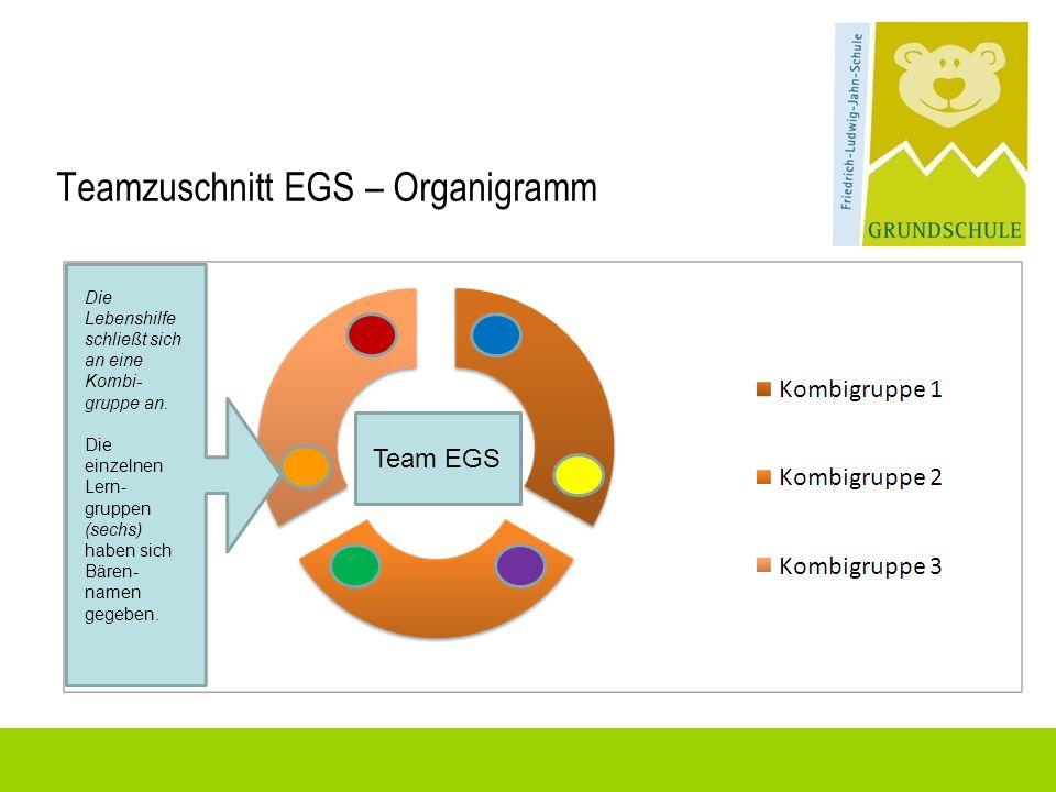 Teamzuschnitt EGS – Organigramm Team EGS Die Lebenshilfe schließt sich an eine Kombi- gruppe an. Die einzelnen Lern- gruppen (sechs) haben sich Bären-
