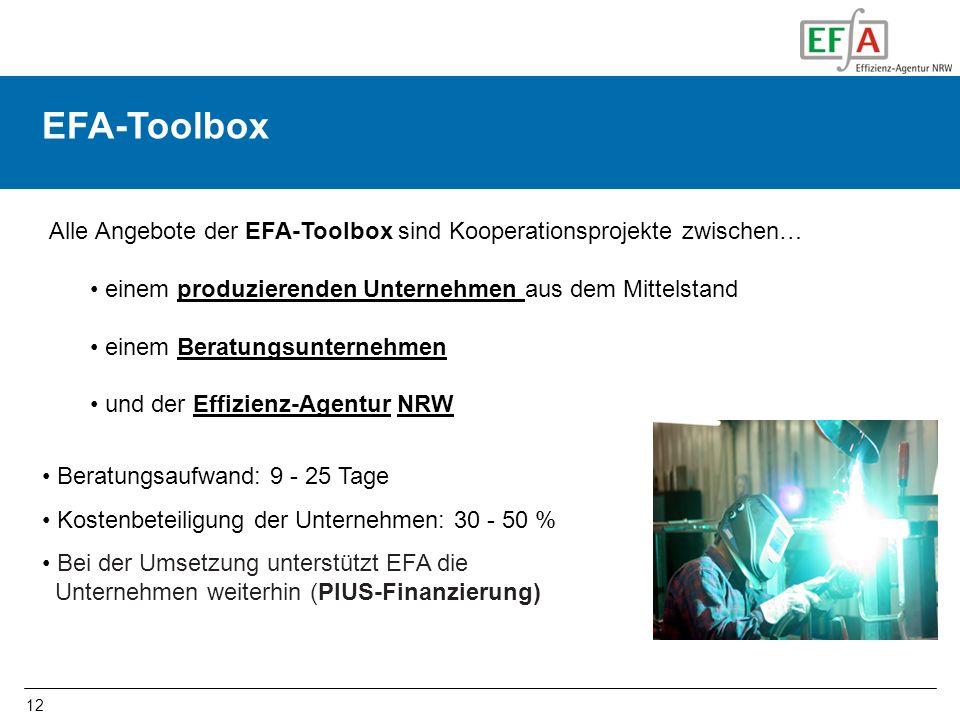 12 EFA-Toolbox Alle Angebote der EFA-Toolbox sind Kooperationsprojekte zwischen… einem produzierenden Unternehmen aus dem Mittelstand einem Beratungsu