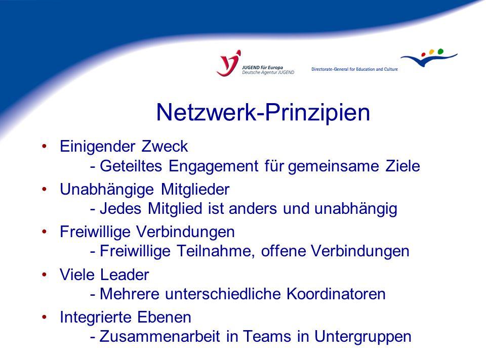 Netzwerk-Zweck.Zum Beispiel: Qualitätssicherung und -entwicklung in JUGEND.