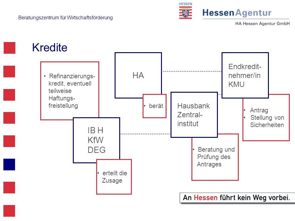 Beratungszentrum für Wirtschaftsförderung Antrag Stellung von Sicherheiten Refinanzierungs- kredit, eventuell teilweise Haftungs- freistellung Endkred