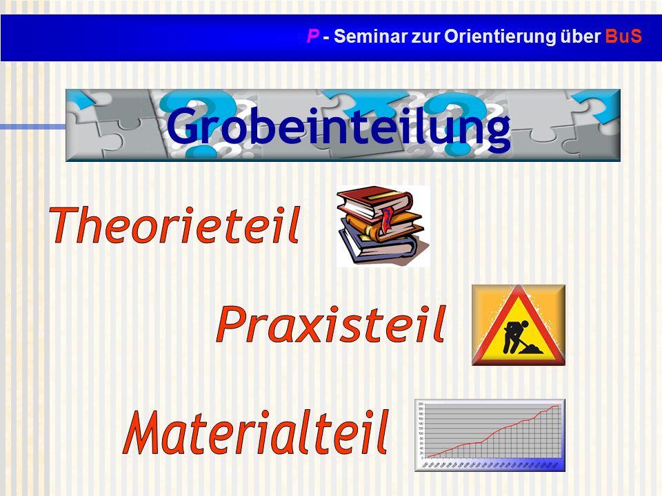 P - Seminar zur Orientierung über BuS Grobeinteilung