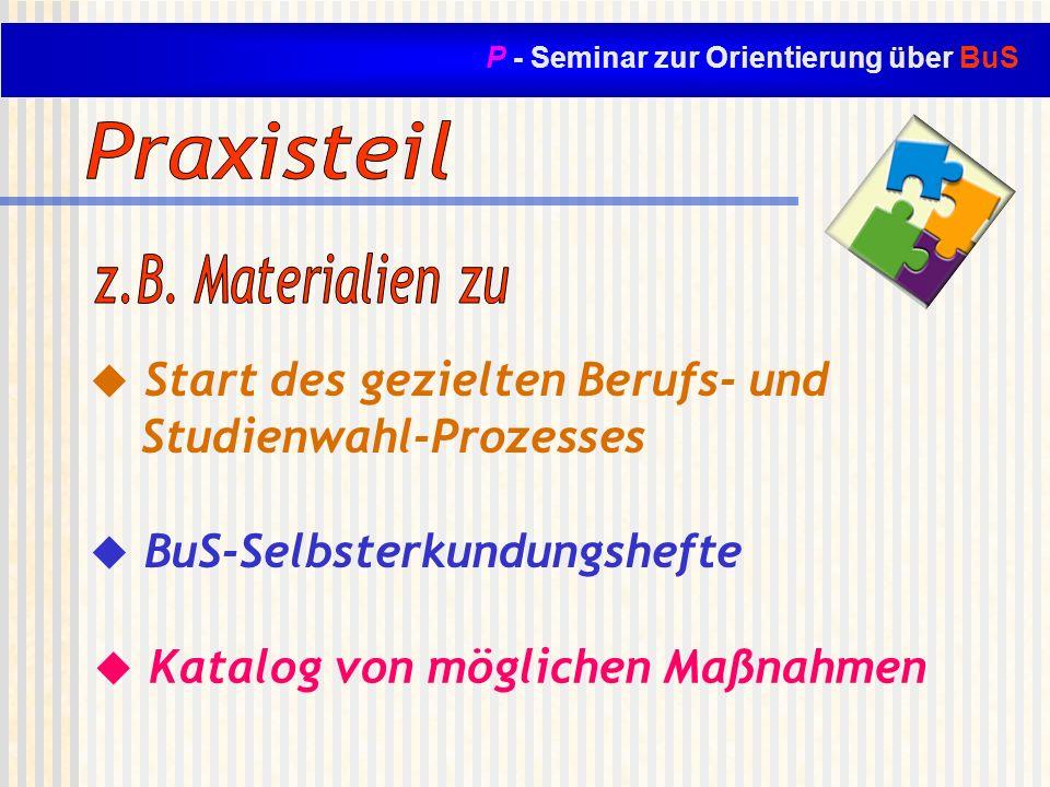 P - Seminar zur Orientierung über BuS Start des gezielten Berufs- und Studienwahl-Prozesses BuS-Selbsterkundungshefte Katalog von möglichen Maßnahmen