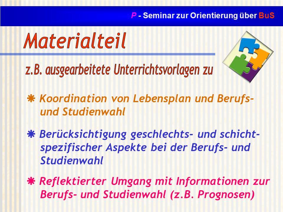 P - Seminar zur Orientierung über BuS Koordination von Lebensplan und Berufs- und Studienwahl Reflektierter Umgang mit Informationen zur Berufs- und S