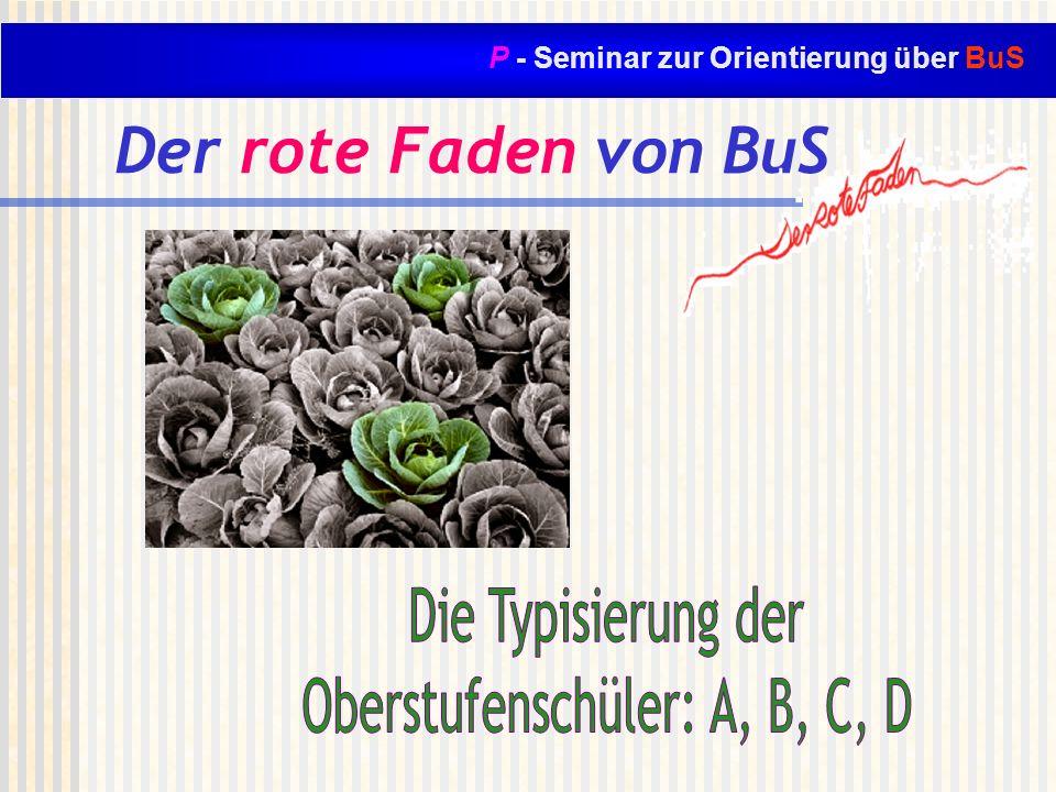 P - Seminar zur Orientierung über BuS Der rote Faden von BuS