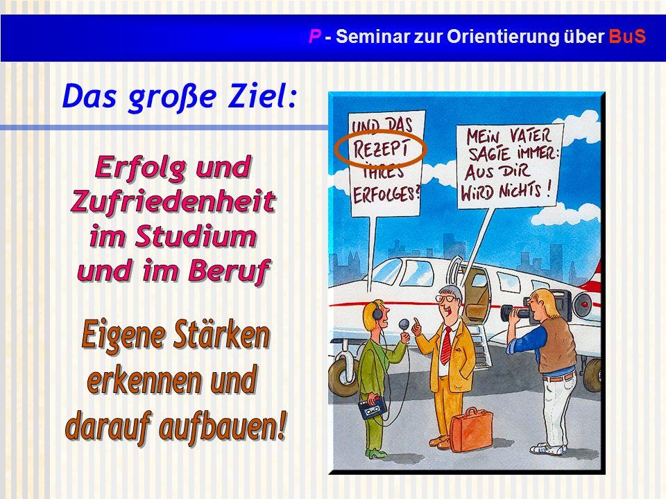 P - Seminar zur Orientierung über BuS Das große Ziel: