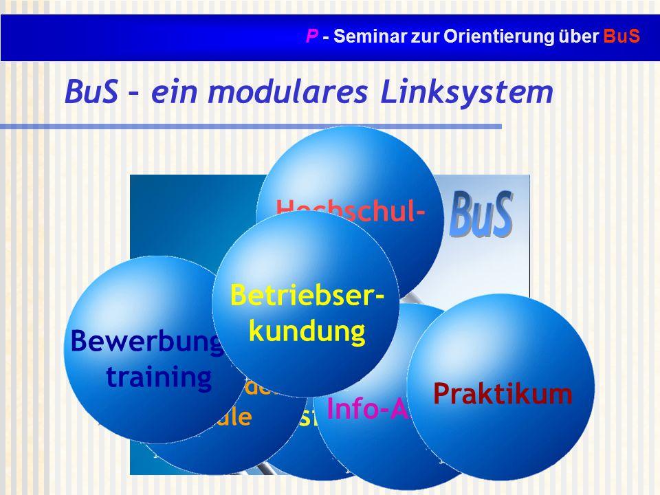 P - Seminar zur Orientierung über BuS BuS- Typisierung Hochschul- tage Berufsver- treter in der Schule Info-Abende Bewerbungs- training Praktikum BuS