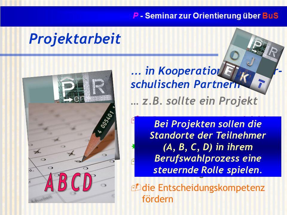 Projektarbeit … in Kooperation mit außer- schulischen Partnern … z.B. sollte ein Projekt in Bezug zu einem Berufsfeld stehen die Schüler motivieren da