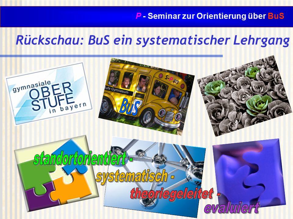 P - Seminar zur Orientierung über BuS Rückschau: BuS ein systematischer Lehrgang