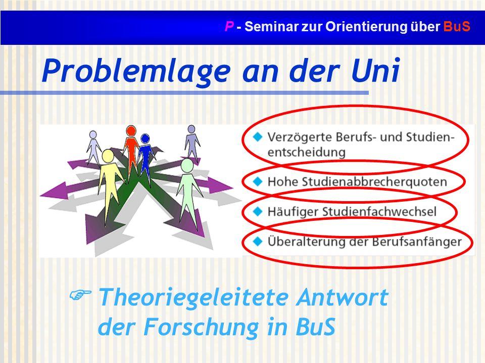 P - Seminar zur Orientierung über BuS Problemlage an der Uni Theoriegeleitete Antwort der Forschung in BuS