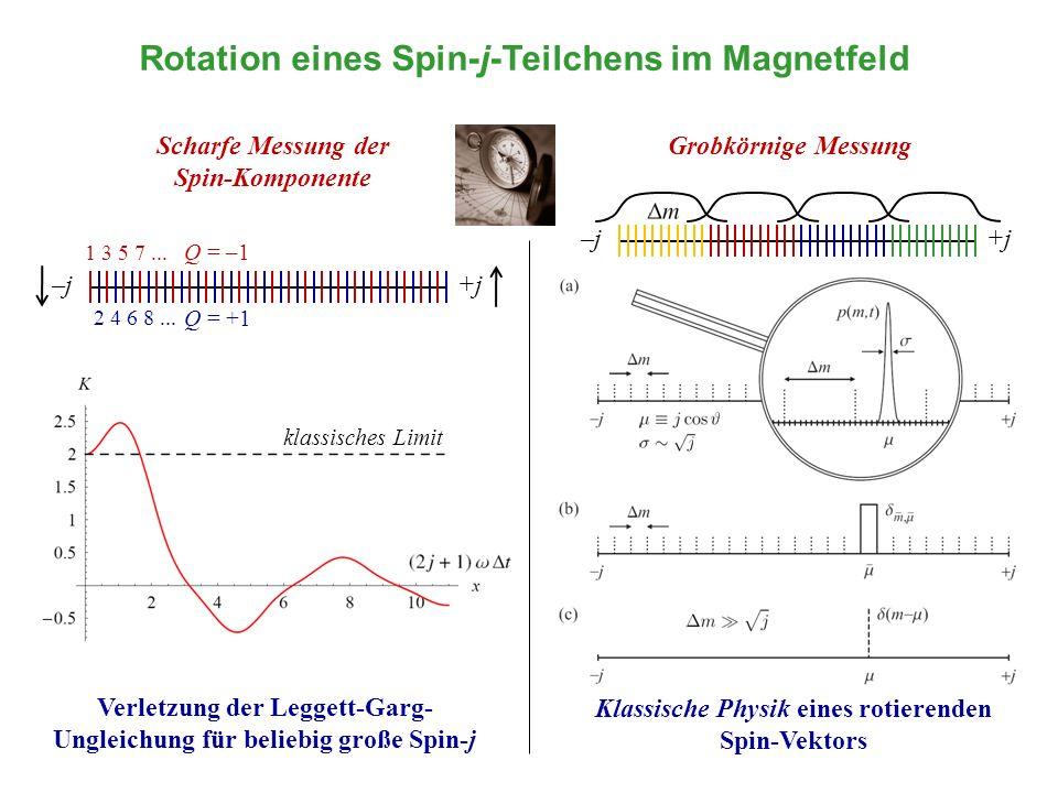 Rotation eines Spin-j-Teilchens im Magnetfeld klassisches Limit Scharfe Messung der Spin-Komponente Verletzung der Leggett-Garg- Ungleichung für belie