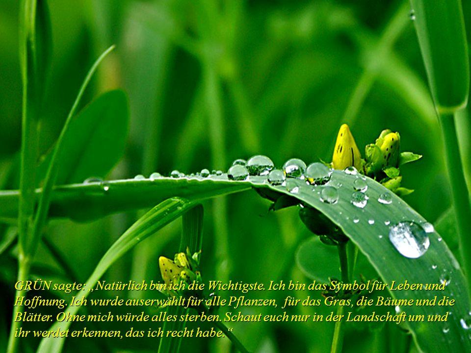 GRÜN sagte: Natürlich bin ich die Wichtigste.Ich bin das Symbol für Leben und Hoffnung.