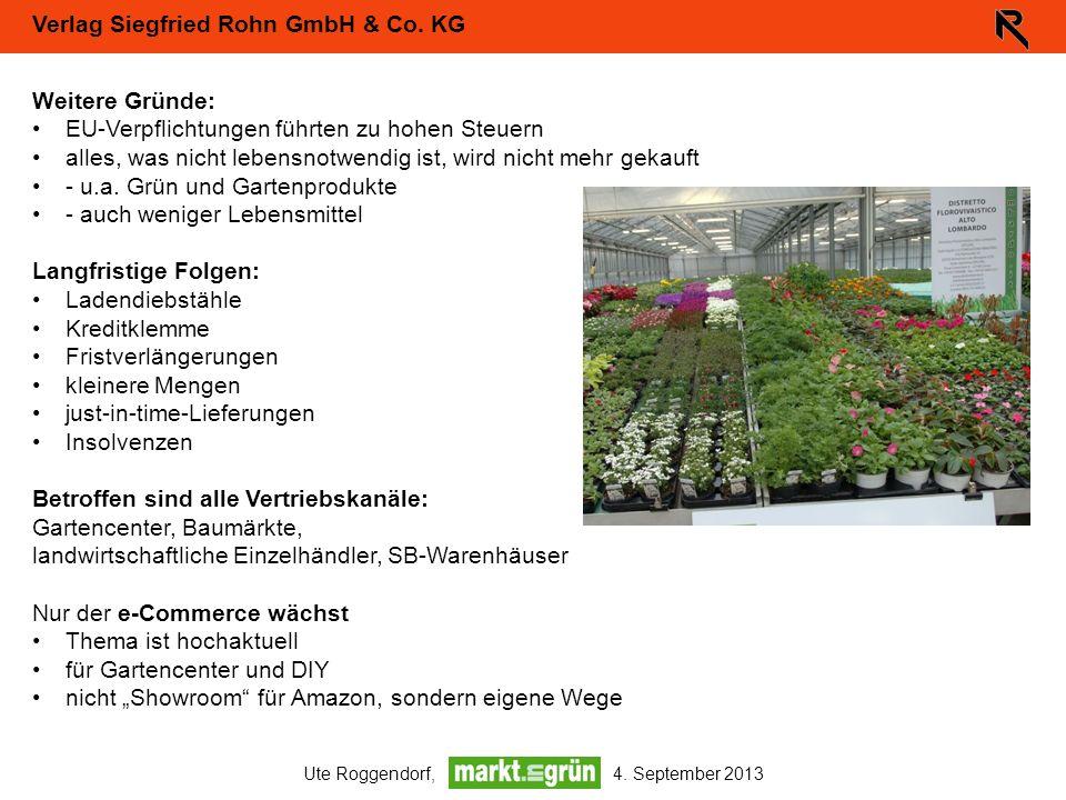 Verlag Siegfried Rohn GmbH & Co. KG Ute Roggendorf, 4. September 2013 Weitere Gründe: EU-Verpflichtungen führten zu hohen Steuern alles, was nicht leb