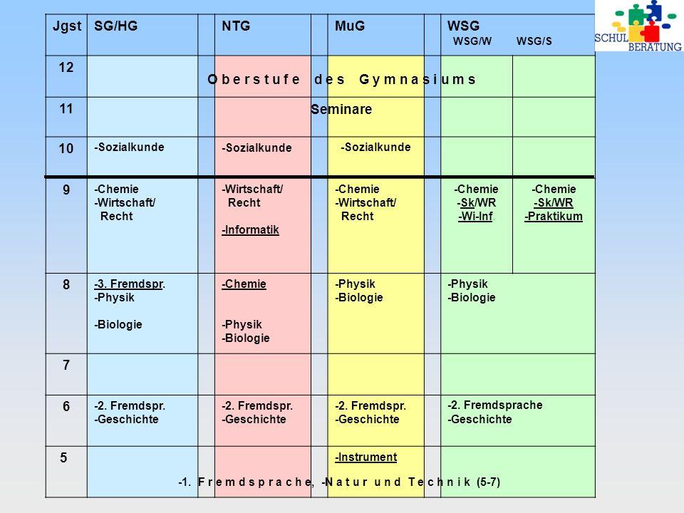 JgstSG/HGNTGMuGWSG WSG/W WSG/S 12 11 10 -Sozialkunde 9 -Chemie -Wirtschaft/ Recht -Wirtschaft/ Recht -Informatik -Chemie -Wirtschaft/ Recht -Chemie -S
