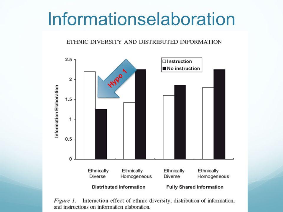Informationselaboration Hypo 1