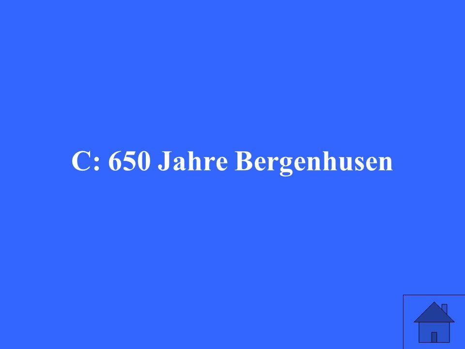 Welches Jubiläum feierte Bergenhusen im Jahr 1954.