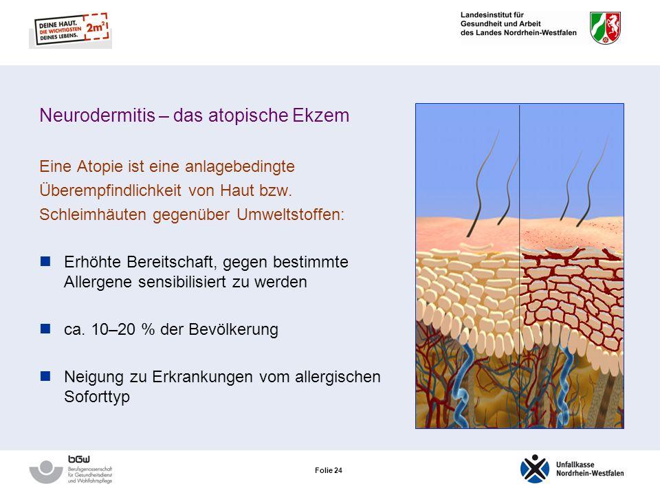 Folie 23 Die Typ-I-Allergie (Reaktion vom Soforttyp) Typisches Beispiel: Allergie gegen Latexproteine!