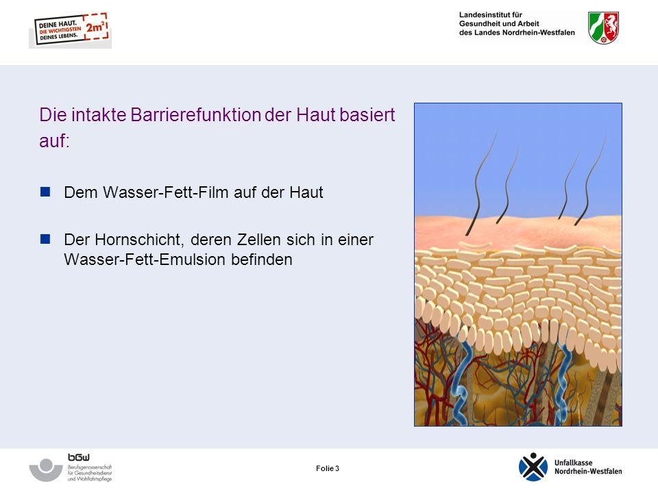 Folie 3 Die intakte Barrierefunktion der Haut basiert auf: Dem Wasser-Fett-Film auf der Haut Der Hornschicht, deren Zellen sich in einer Wasser-Fett-Emulsion befinden