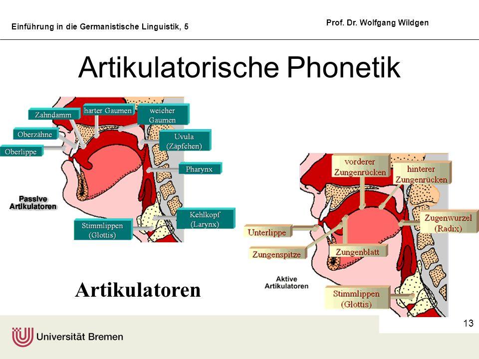 Einführung in die Germanistische Linguistik, 5 Prof. Dr. Wolfgang Wildgen 13 Artikulatorische Phonetik Artikulatoren