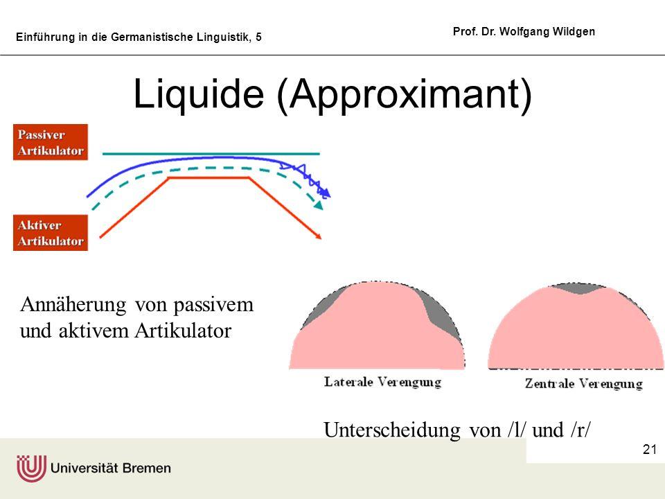 Einführung in die Germanistische Linguistik, 5 Prof. Dr. Wolfgang Wildgen 21 Liquide (Approximant) Unterscheidung von /l/ und /r/ Annäherung von passi