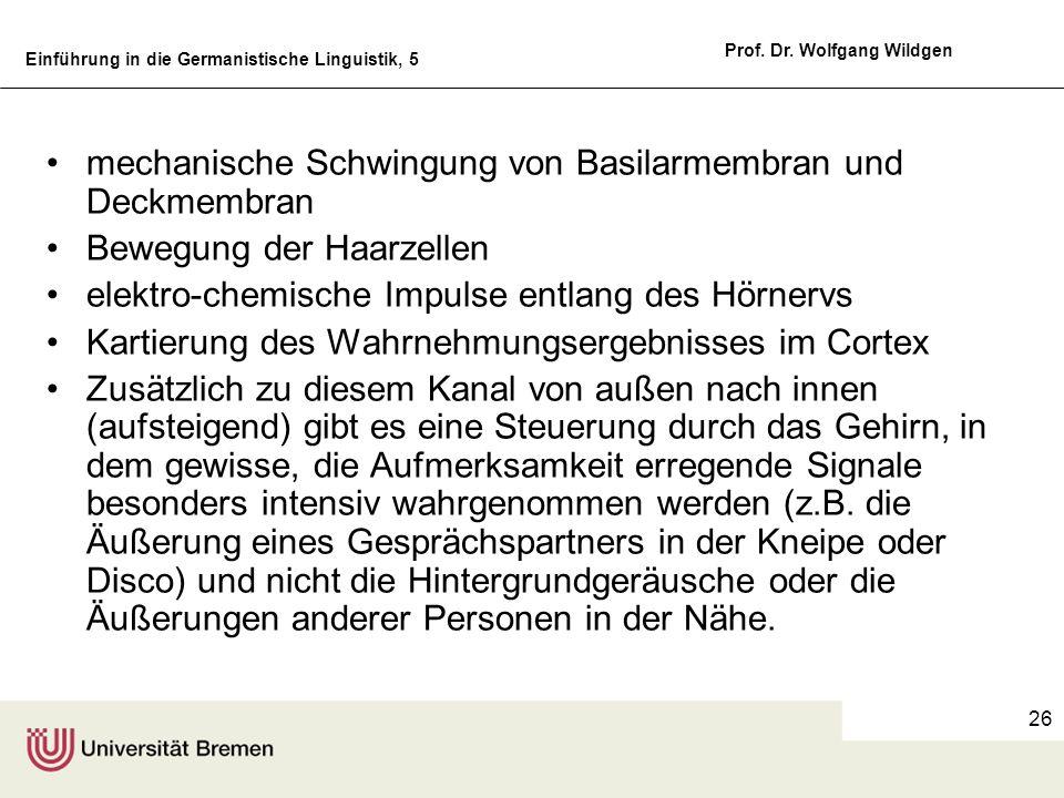 Einführung in die Germanistische Linguistik, 5 Prof. Dr. Wolfgang Wildgen 26 mechanische Schwingung von Basilarmembran und Deckmembran Bewegung der Ha