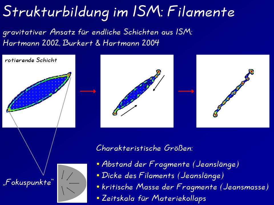 Strukturbildung im ISM: Filamente gravitativer Ansatz für endliche Schichten aus ISM: Hartmann 2002, Burkert & Hartmann 2004 Fokuspunkte rotierende Sc