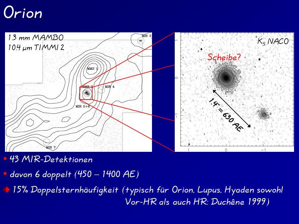Orion 43 MIR-Detektionen davon 6 doppelt (450 – 1400 AE) 1.3 mm MAMBO 10.4 µm TIMMI 2 15% Doppelsternhäufigkeit (typisch für Orion, Lupus, Hyaden sowohl Vor-HR als auch HR: Duchêne 1999) K S NACO 1,4 = 630 AE Scheibe?