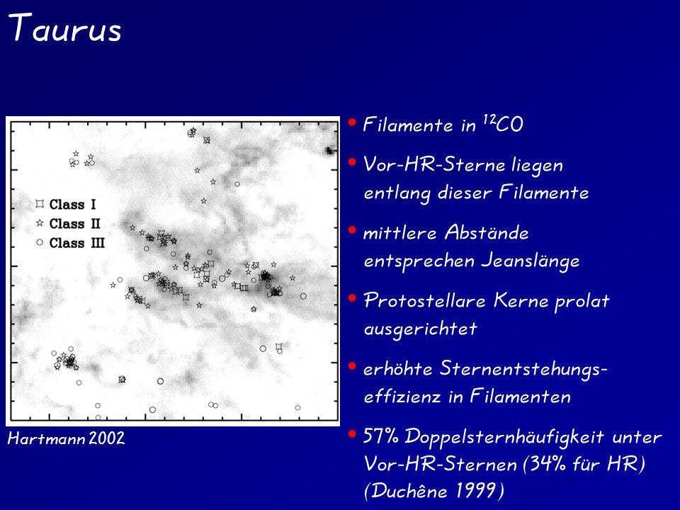 Taurus Hartmann 2002 Filamente in 12 CO Vor-HR-Sterne liegen entlang dieser Filamente mittlere Abstände entsprechen Jeanslänge Protostellare Kerne prolat ausgerichtet erhöhte Sternentstehungs- effizienz in Filamenten 57% Doppelsternhäufigkeit unter Vor-HR-Sternen (34% für HR) (Duchêne 1999)