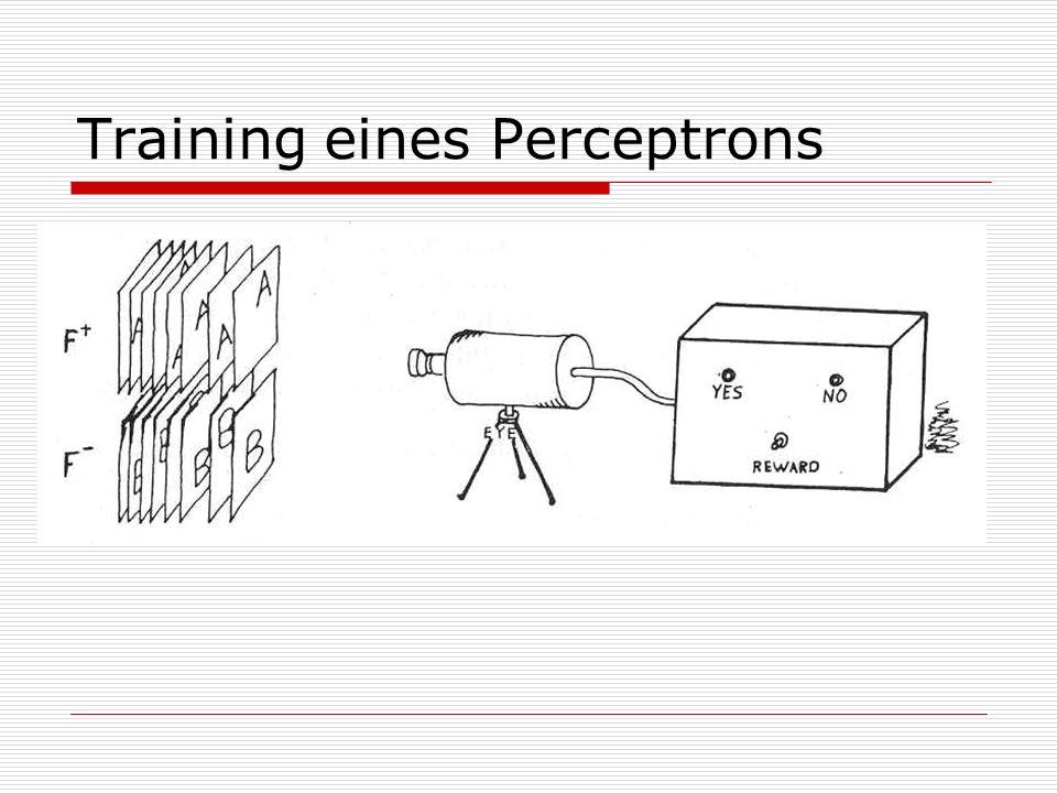 Zusammenfassung Simple Perceptrons können viele, sehr komplexe Probleme effizient lösen.