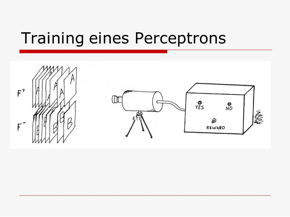 Training eines Perceptrons