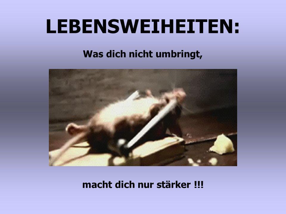LEBENSWEIHEITEN: Was dich nicht umbringt, macht dich nur stärker !!!