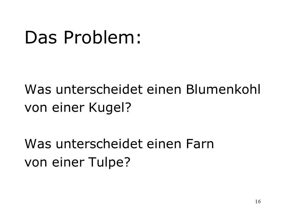 16 Das Problem: Was unterscheidet einen Blumenkohl von einer Kugel? Was unterscheidet einen Farn von einer Tulpe?
