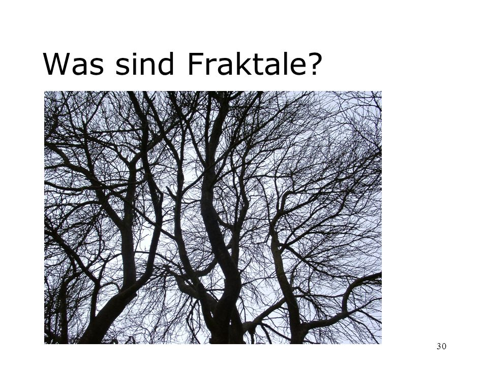 30 Was sind Fraktale?