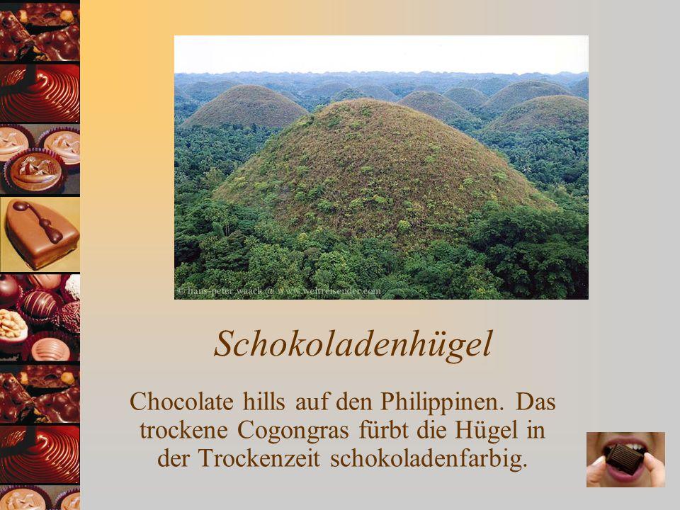 Schokoladenhügel Chocolate hills auf den Philippinen. Das trockene Cogongras fürbt die Hügel in der Trockenzeit schokoladenfarbig.