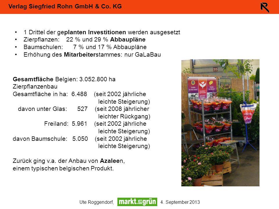 Verlag Siegfried Rohn GmbH & Co. KG Ute Roggendorf, 4. September 2013 1 Drittel der geplanten Investitionen werden ausgesetzt Zierpflanzen: 22 % und 2