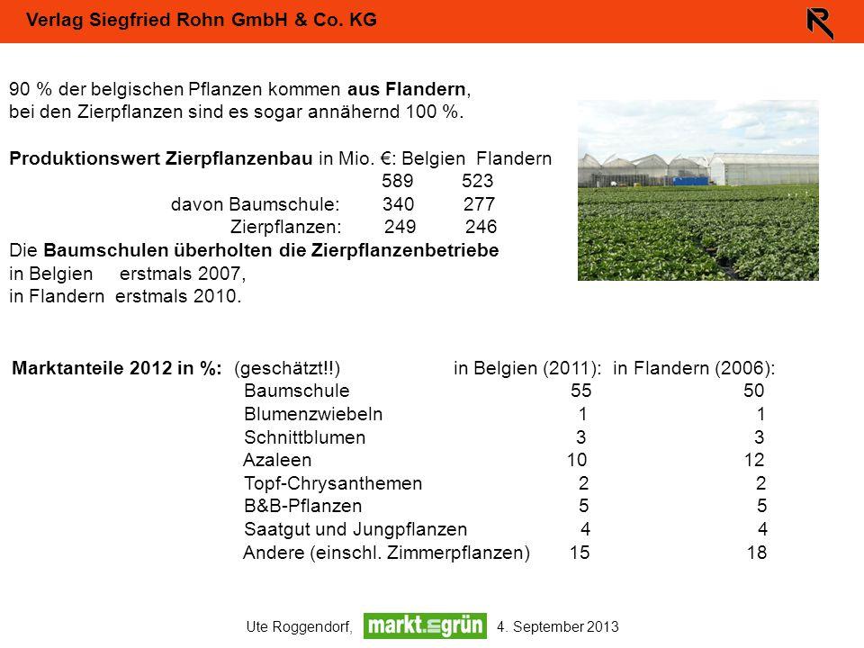 Verlag Siegfried Rohn GmbH & Co. KG Ute Roggendorf, 4. September 2013 90 % der belgischen Pflanzen kommen aus Flandern, bei den Zierpflanzen sind es s