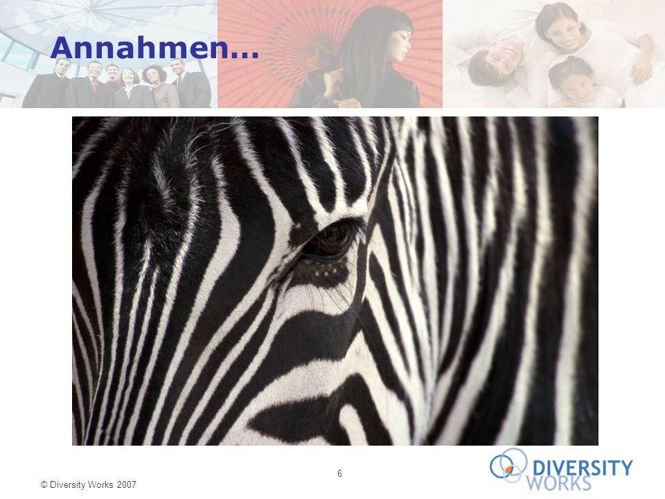 7 © Diversity Works 2007...die gemeinsamen Arten und Weisen, durch die Gruppen von Menschen die Welt verstehen und interpretieren.