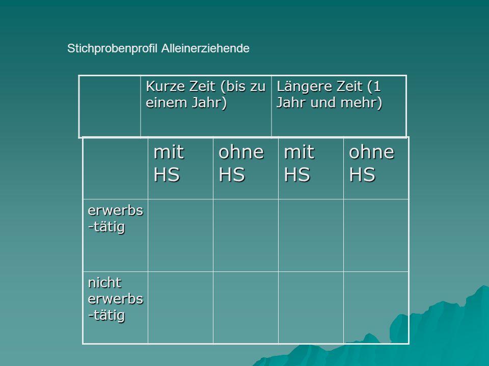 Stichprobenprofil Alleinerziehende Kurze Zeit (bis zu einem Jahr) Längere Zeit (1 Jahr und mehr) mit HS ohne HS mit HS ohne HS erwerbs -tätig nicht er