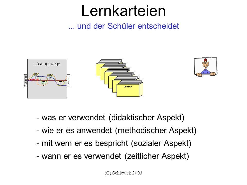 (C) Schiewek 2003 Lernkarteien - was er verwendet (didaktischer Aspekt) - wie er es anwendet (methodischer Aspekt) - mit wem er es bespricht (sozialer