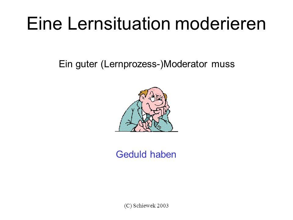 (C) Schiewek 2003 Eine Lernsituation moderieren nicht unnötig kritisieren, sondern muss motivieren Ein guter (Lernprozess-)Moderator darf
