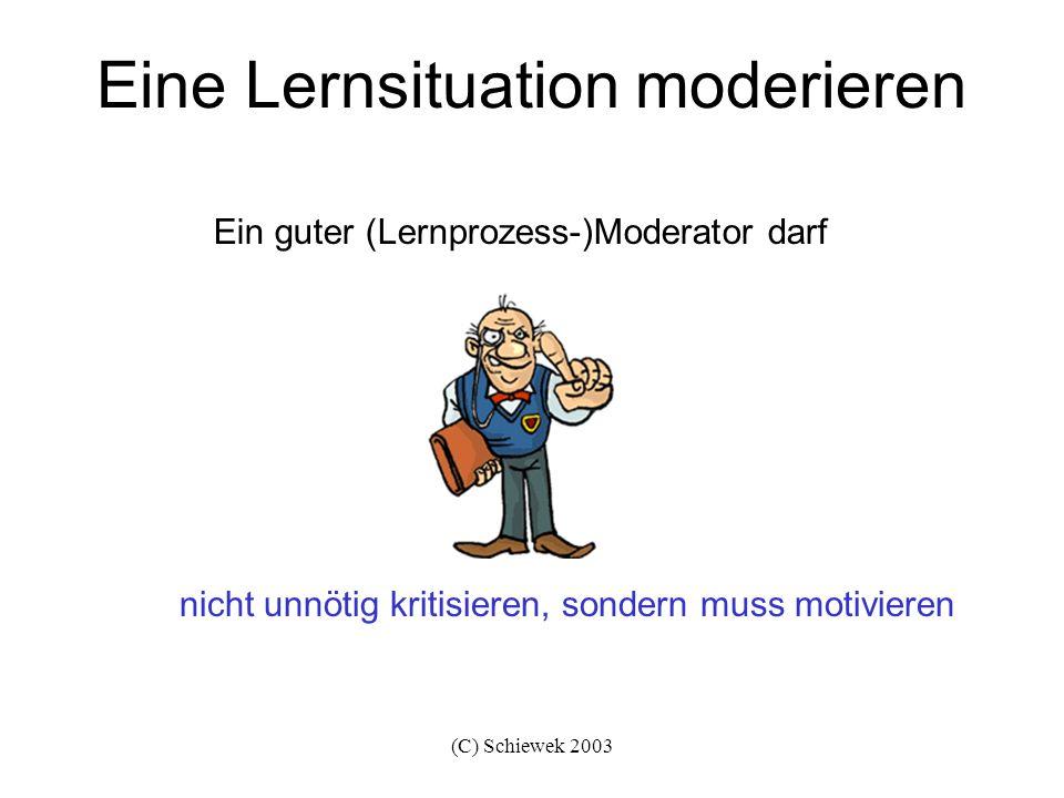 (C) Schiewek 2003 Eine Lernsituation moderieren den Lernprozess aktiv unterstützen Ein guter (Lernprozess-)Moderator muss