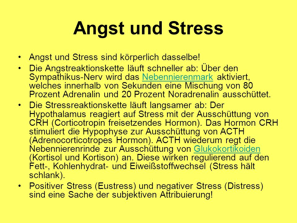 Angst und Stress Angst und Stress sind körperlich dasselbe! Die Angstreaktionskette läuft schneller ab: Über den Sympathikus-Nerv wird das Nebennieren