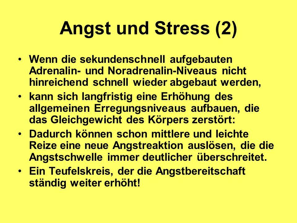 Angst und Stress (2) Wenn die sekundenschnell aufgebauten Adrenalin- und Noradrenalin-Niveaus nicht hinreichend schnell wieder abgebaut werden, kann s