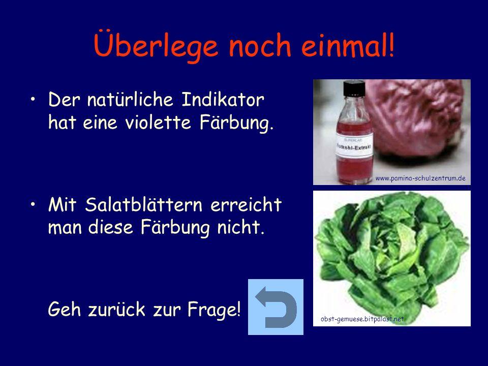 Überlege noch einmal! Der natürliche Indikator hat eine violette Färbung. Mit Salatblättern erreicht man diese Färbung nicht. Geh zurück zur Frage! ww