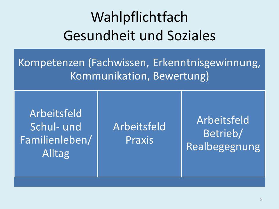 Wahlpflichtfach Gesundheit und Soziales Kompetenzen (Fachwissen, Erkenntnisgewinnung, Kommunikation, Bewertung) Arbeitsfeld Schul- und Familienleben/