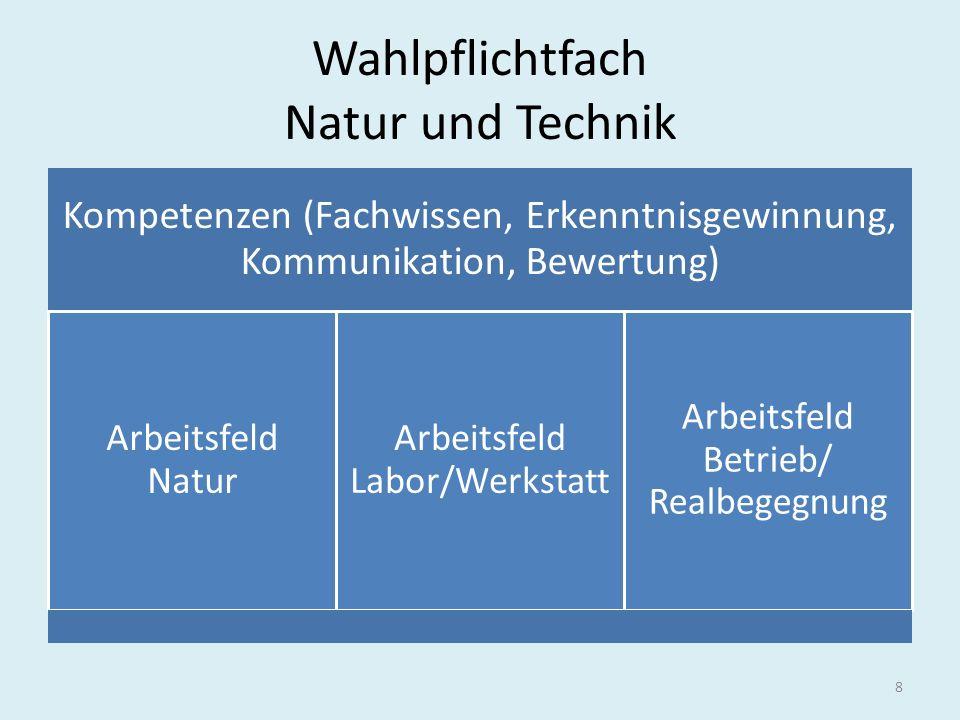 Wahlpflichtfach Natur und Technik Kompetenzen (Fachwissen, Erkenntnisgewinnung, Kommunikation, Bewertung) Arbeitsfeld Natur Arbeitsfeld Labor/Werkstat